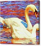 Birds On The Lake Acrylic Print by Jeff Kolker