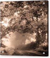 Black Dog On A Misty Road. Misty Roads Of Scotland Acrylic Print by Jenny Rainbow