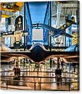 Blackbird Rear View Acrylic Print by Randy Scherkenbach