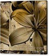 Bliss II Acrylic Print by Yanni Theodorou