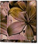 Bliss Acrylic Print by Yanni Theodorou