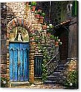 Blue Door Acrylic Print by Tim Davis
