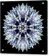 Blue Globe Thistle Flower Mandala Acrylic Print by David J Bookbinder