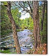 Blue Spring Branch 2 Acrylic Print by Marty Koch