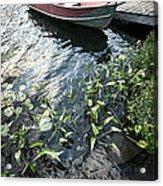 Boat At Dock On Lake Acrylic Print by Elena Elisseeva