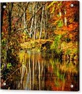 Bob's Creek Acrylic Print by Lois Bryan