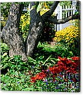 Botanical Landscape 2 Acrylic Print by Eunice Miller