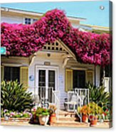 Bougainvillea House Acrylic Print by Cheryl Young