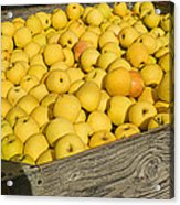 Box Of Golden Apples Acrylic Print by Garry Gay