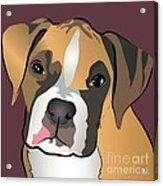 Boxer Puppy Pet Portrait  Acrylic Print by Robyn Saunders