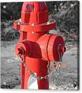 Brand New Red Hydrant On Bw Acrylic Print by Jeff at JSJ Photography