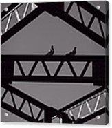 Bridge Abstract Acrylic Print by Bob Orsillo