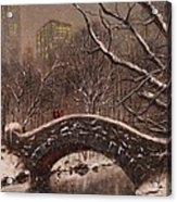 Bridge In Central Park Acrylic Print by Tom Shropshire