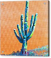 Bright Cactus Acrylic Print by Greg Wells