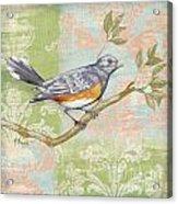 Brocade Songbird Iv Acrylic Print by Paul Brent