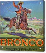 Bronco Oranges Acrylic Print by American School