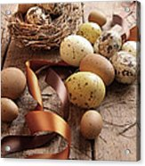 Brown And Yellow Eggs With Ribbons For Easter Acrylic Print by Sandra Cunningham