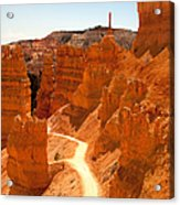 Bryce Canyon Trail Acrylic Print by Jane Rix