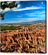 Bryce Acrylic Print by Robert Bales