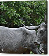 Bull Market Quadriptych 2 Of 4 Acrylic Print by Christine Till