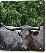 Bull Market Quadriptych 3 Of 4 Acrylic Print by Christine Till