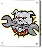 Bulldog Dog Spanner Head Mascot Acrylic Print by Aloysius Patrimonio