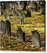 Buried In Boston Acrylic Print by Bruce Carpenter
