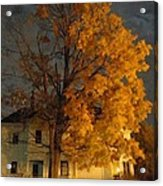 Burning Leaves At Night Acrylic Print by Guy Ricketts