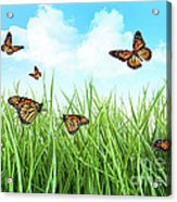 Butterflies In Tall Wet Grass  Acrylic Print by Sandra Cunningham