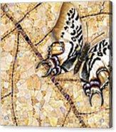 Butterfly Mosaic 01 Elena Yakubovich Acrylic Print by Elena Yakubovich