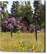 Cabin And Wildflowers Acrylic Print by Athena Mckinzie