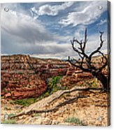 Calf Creek Acrylic Print by Dustin  LeFevre