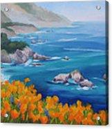 California Poppies Big Sur Acrylic Print by Karin  Leonard