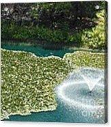 Calistoga Summer Acrylic Print by Mini Arora