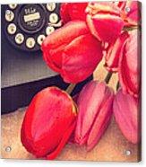 Call Me My Love Acrylic Print by Edward Fielding