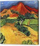 Carneros Vineyard Summer Acrylic Print by Amelia Hunter