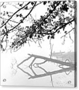 Carpenter Lake Morning Acrylic Print by Wendell Thompson