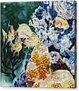Carribean Currents Poster Acrylic Print by Dona Desjardins
