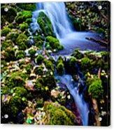 Cascade Creek Acrylic Print by Chad Dutson