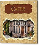 Castle Button Acrylic Print by Mike Savad
