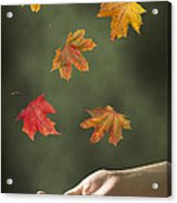 Catching Leaves Acrylic Print by Amanda Elwell