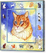 Cats Purrfection Five - Orange Tabby Acrylic Print by Linda Mears
