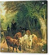 Cattle Watering In A Wooded Landscape Acrylic Print by Friedrich Johann Voltz