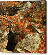 Cave Acrylic Print by Billy Beasley