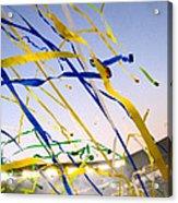 Celebration Acrylic Print by Jon Berry