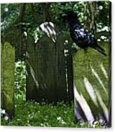 Cemetery With Ancient Gravestones And Black Crow  Acrylic Print by Georgia Fowler