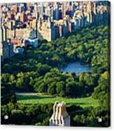 Central Park Acrylic Print by Brian Jannsen