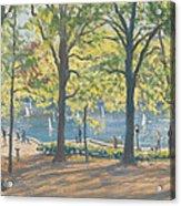 Central Park New York Acrylic Print by Julian Barrow