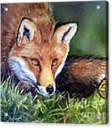 Chance Encounter Acrylic Print by Patricia Pushaw