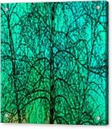 Change Of Seasons Acrylic Print by Bob Orsillo
